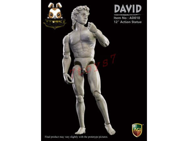 ACI Toys AD010 Action Statue - David_ Box Set _Michelangelo Art Now AT096Z