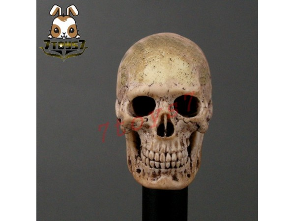 ACI Toys 1/6 Cannibal Skull (ACI-753) AT032A