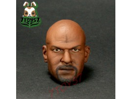 ACI Toys 1/6 AB-12 Muscular Body Series_ Head ONLY_ African Terry AT051C