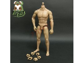 ACI Toys 1/6 Gladiator of Rome 2 – Spartacus Body + hands + feet AT028A