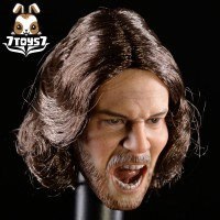 ACI Toys 1/6 ACI19 Thracian General_ Headsculpt (Rooted Hair) AT071A