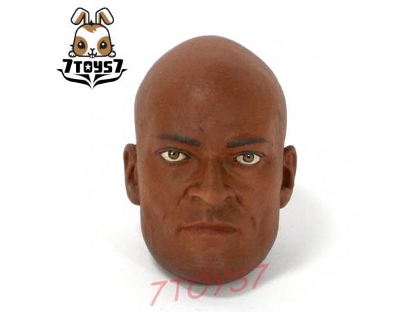 ACI Toys 1/6 Gladiator Verus B_ Head _Roman IV Spartacus Doctore Peter M AT043F