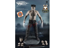 [Pre-order] ADD Toys 1/6 AD02 War Wolves Muscle version_ Box Set _X-Men ZZ162Y