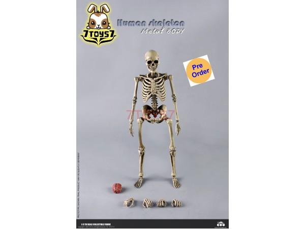 [Pre-order deposit] Coo Model 1/6 BS011 The Human Skeleton (Diecast Alloy)_ Set _CL066Z