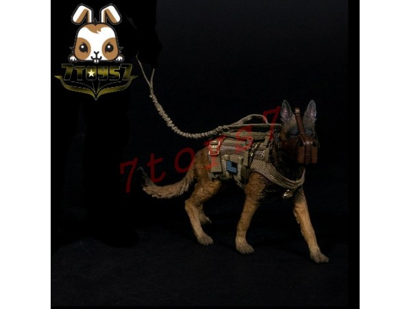 DAM Toys 1/6 78040 DEVGRU K9-handler in Afghanistan_ Working Dog - Tactical Body Armor _Animal Now DM086X
