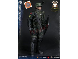 [Pre-order] DAM Toys 1/6 78053 PAP Snow Leopard Commando Unit Team Leader_ Box Set _DM104Z