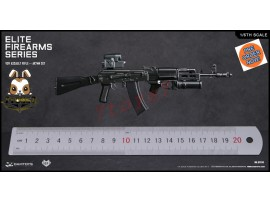 [Pre-order] DAM Toys 1/6 EF010 Elite Firearms Series 2 Spetsnaz Assault Rifle AK74M_ Set _DM106E