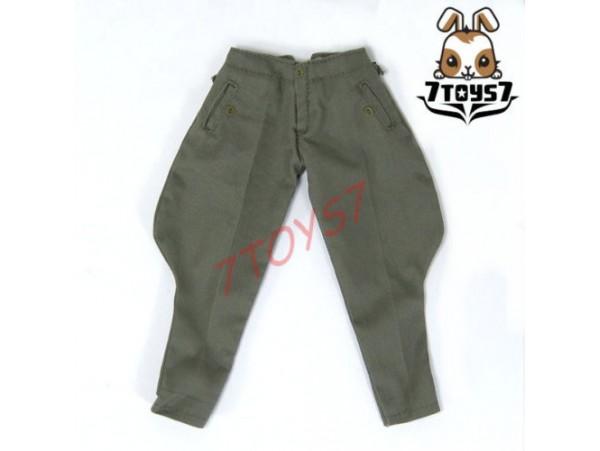 DID 1/6 Michael Wittmann_ Green Pants _German Elite Tiger Ace WWII Now DD047J
