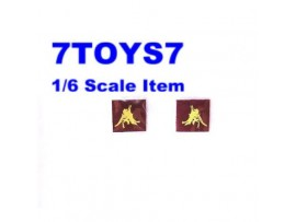 DID 1/6 Red Devil Michael Taylor_ Badges _6th Airborne DDX49E