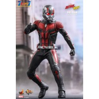 Hot Toys 1/6 MMS497 Ant-Man and the Wasp - Ant-Man_ Box _HT470Z