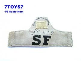 HOT TOYS 1/6 USAF Airman_ Armband_ Iraqi Freedom Iraq SF HTX19D