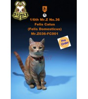 [Pre-order] Mr. Z 1/6 MRZ036 Felis Catus_ 001 Set w/ collar _MRZ038A