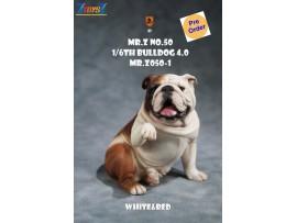 [Pre-order deposit] Mr. Z 1/6 MRZ050 Animal Series No.50 Bulldog 4.0_ Set #1 _MRZ056A