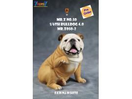 [Pre-order deposit] Mr. Z 1/6 MRZ050 Animal Series No.50 Bulldog 4.0_ Set #2 _MRZ056B