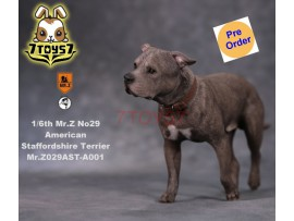 [Pre-order] Mr. Z 1/6 MRZ029 Animal Series No.29 American Staffordshire Terrier_ A001 Dog w/ collar Set _MRZ027A