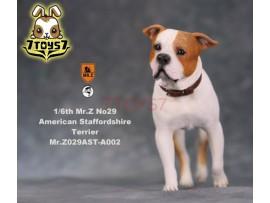 Mr. Z 1/6 MRZ029 Animal Series No.29 American Staffordshire Terrier_ A002 Dog w/ collar Set _MRZ028A