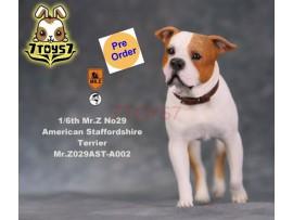 [Pre-order] Mr. Z 1/6 MRZ029 Animal Series No.29 American Staffordshire Terrier_ A002 Dog w/ collar Set _MRZ028A