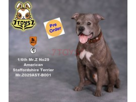 [Pre-order] Mr. Z 1/6 MRZ029 Animal Series No.29 American Staffordshire Terrier_ B001 Dog w/ collar Set _MRZ027B