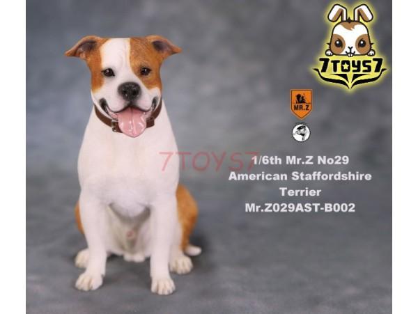 Mr  Z, 1/6, MRZ029, Animal, American, Staffordshire, Terrier