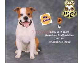 [Pre-order] Mr. Z 1/6 MRZ029 Animal Series No.29 American Staffordshire Terrier_ B002 Dog w/ collar Set _MRZ028B
