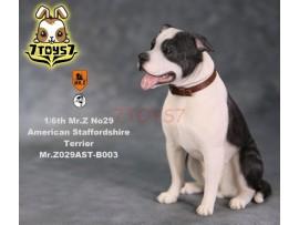 Mr. Z 1/6 MRZ029 Animal Series No.29 American Staffordshire Terrier_ B003 Dog w/ collar Set _MRZ029B