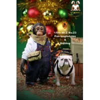 Mr. Z 1/6 MRZ023 Real Animal Series No.23 Chimpanzee and Bulldog_ Statues Set _MRZ019Z