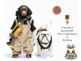[Pre-order] Mr. Z 1/6 MRZ023 Real Animal Series No.23 Pan trolodytes & Bulldog_ VIP Statue Set _MRZ019Y