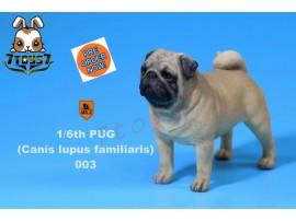 [Pre-order] Mr. Z 1/6 Pug (Canis Iupus familiaris)_ 003 Dog w/ collar Set _Animal Statue MRZ014C
