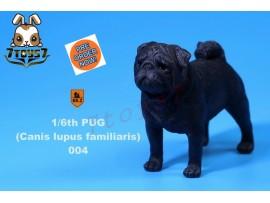 [Pre-order] Mr. Z 1/6 Pug (Canis Iupus familiaris)_ 004 Dog w/ collar Set _Animal Statue MRZ014D