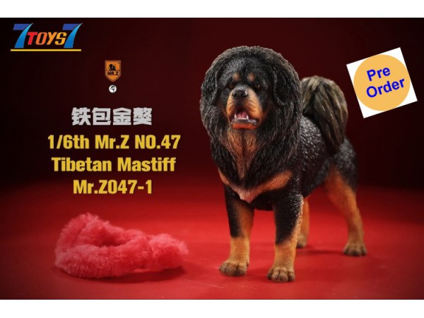 [Pre-order deposit] Mr. Z 1/6 MRZ047 Animal Series No.47 Tibetan Mastiff_ Set #1 _MRZ051A