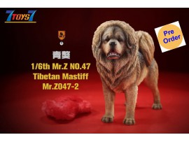 [Pre-order deposit] Mr. Z 1/6 MRZ047 Animal Series No.47 Tibetan Mastiff_ Set #2 _MRZ051B