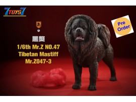 [Pre-order deposit] Mr. Z 1/6 MRZ047 Animal Series No.47 Tibetan Mastiff_ Set #3 _MRZ051C