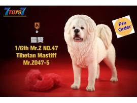 [Pre-order Deposit] Mr. Z 1/6 MRZ047 Animal Series No.47 Tibetan Mastiff_ Set #5 _MRZ051E
