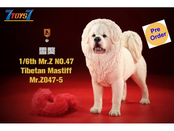 [Pre-order Deposit] Mr. Z 1/6 MRZ047 Animal Series No.47 Tibetan Mastiff_ Set #5 _MRZ051E