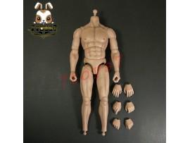 Pangaea 1/6 PG01 Greek General_ Body + hands _TROY Brad Anicent Achilles PG001ZB