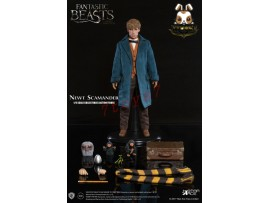 Star Ace Toys 1/6 Fantastic Beasts and Where to find them - Newt Scamander_ Box _SB022Z
