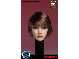 Super Duck 1/6 SDH002A rooted short hair Female_ Head _Now SD031A