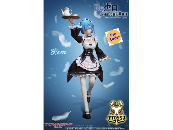[Pre-order deposit] TOYSEIIKI 1/6 TS09 Re:ZERO - Starting Life in Another World - Rem_ Box Set _TS005Z