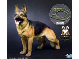 TOYS CITY 1/6 Working Dog - German Shepherd_ Set w/ collar _Animal Now TC059A
