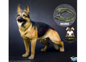 TOYS CITY 1/6 Working Dog - German Shepherd_ Set w/ collar _Animal Now TC059A