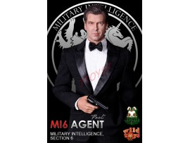 Wild Toys 1/6 MI6 Agent Paul_ Box Set _Movie Spy 007 Now WT033Z
