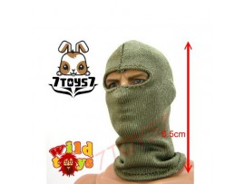 Wild Toys 1/6 Balaclava OD Green_ Mask _Now WT005D