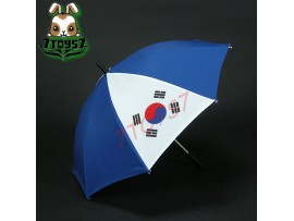 Wild Toys 1/6 National Flags Umbrella S3_ Korea _ Olympic Foldable WT024H