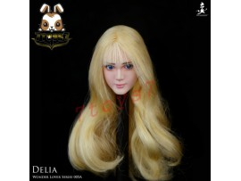 Wondery 1/6 WLS005A Female Delia_ Head _moveable eyes rooted hair Now WL005A