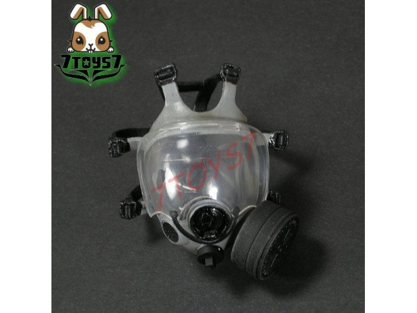ZCWO 1/6 US Riot Police - Shawn_ Bonus MCU-2/P Mask _ZC World Now ZC035T